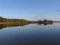 3140, Ežerai su menturdumblių bendrijomis (Platelių ežeras)